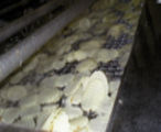 Potato chips in factory.